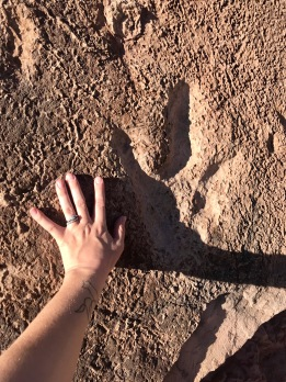 Dinosaur Tracks in Moab, Utah. Read my Unearthly Utah Guide above to see more!